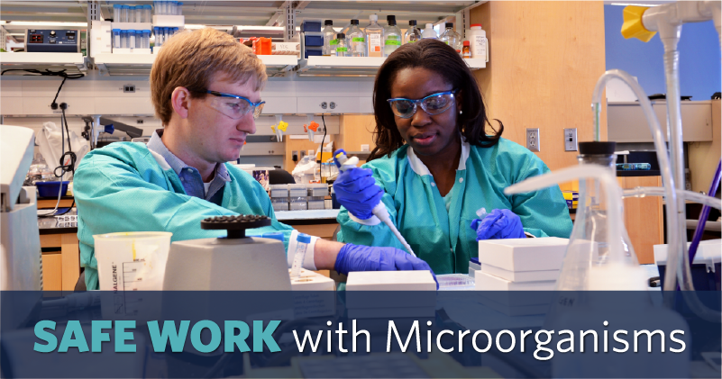 Safe work with microorganisms